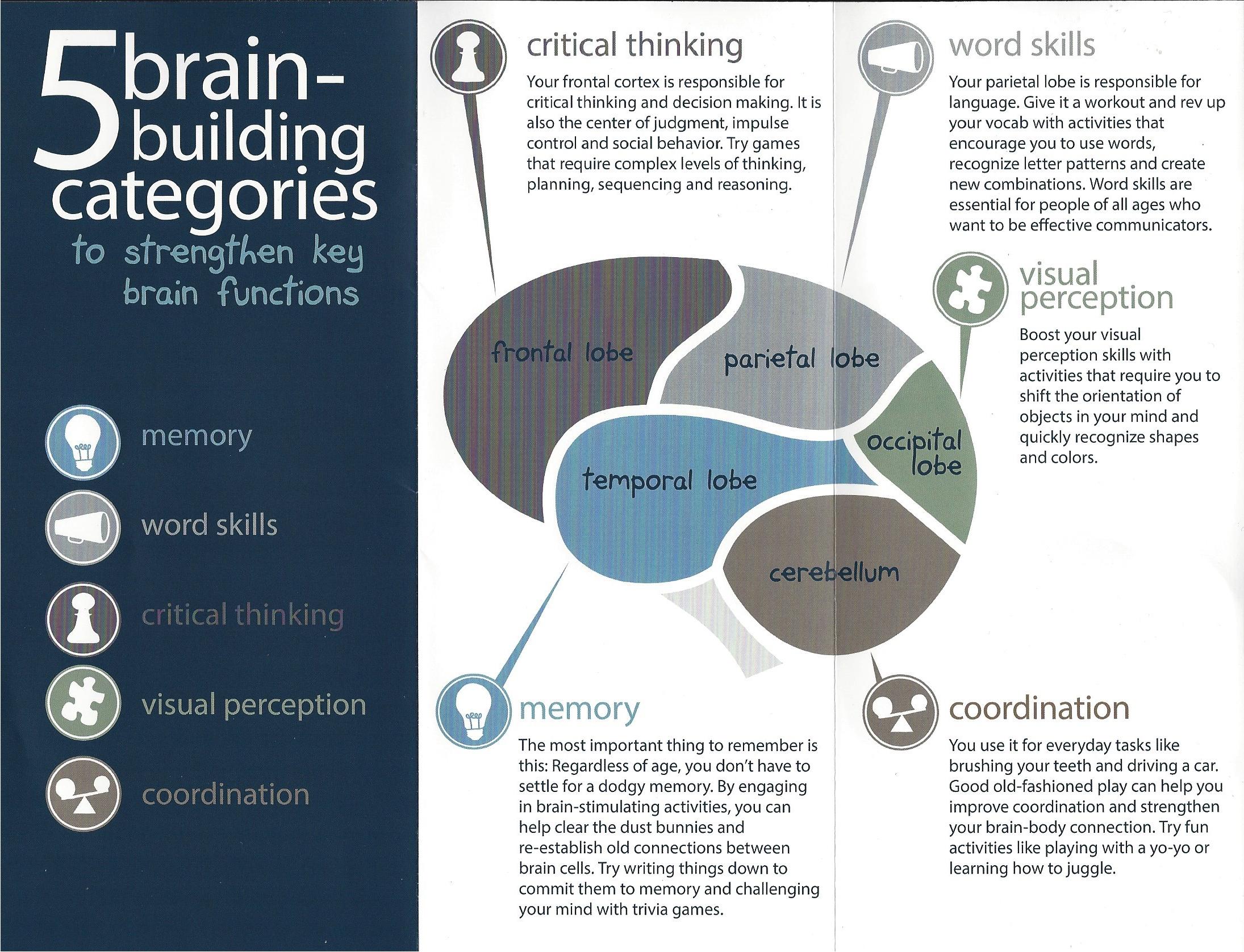 Sensory Integration Toys and Games – Brian Esty LMT